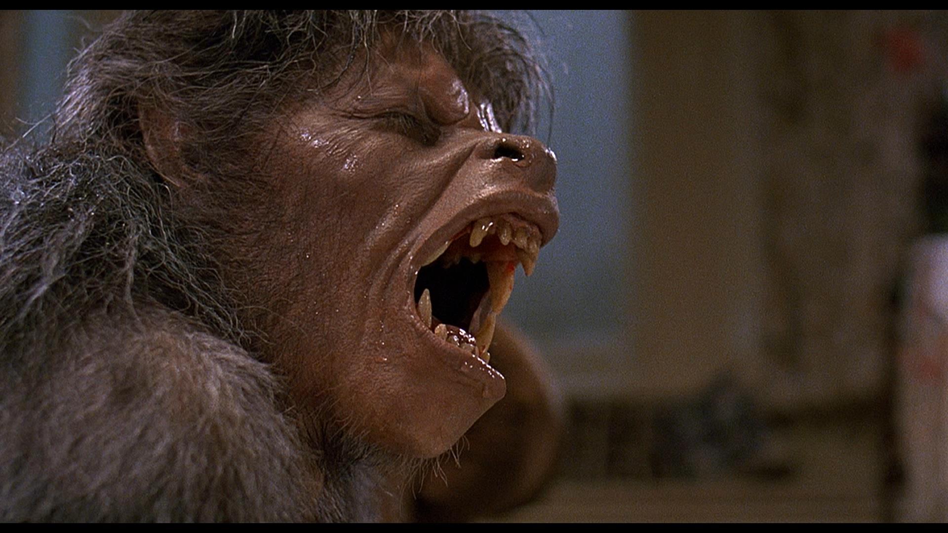 american werewolf2